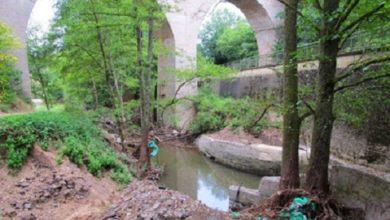 Photo of Geplanter Hochwasserschutz am Bierbach: SGD Nord gibt Einblick