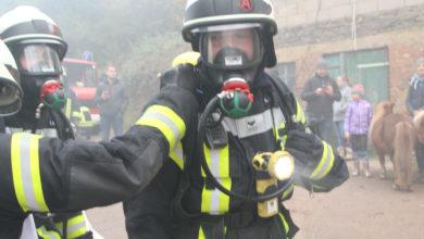Photo of Tierrettung-,Menschenrettung und Brandbekämpfung – eine besondere Herausforderung  der Einsatzkräfte./Video
