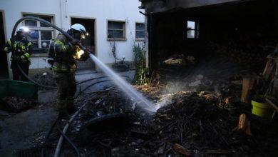 Photo of Grünschnitt in Brand – Feuerwehr kann in Wellen schlimmeres verhindern