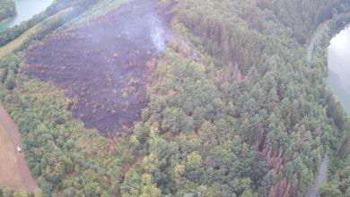 Photo of Großer Waldbrand am gestrigen Dienstag in Luxemburg