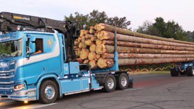 Photo of Schwerer als die Polizei erlaubt: Überladener Langholztransporter gestoppt