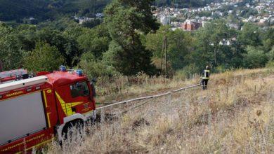 Photo of Flächenbrand auf Bottelter in Saarburg.