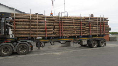 Photo of Holztransport mit über 10 Tonnen zu viel gestoppt – Unternehmen Wiederholungstäter