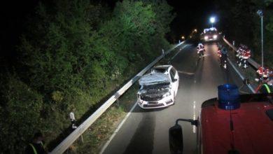 Photo of Dramatischer Verkehrsunfall mit Pferd in der Dunkelheit – Ein Pferd langsam an die Dunkelheit gewöhnen.